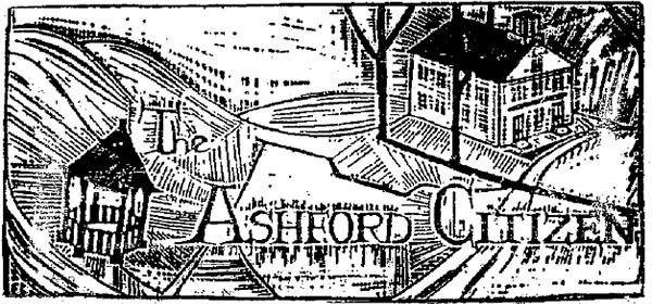 The Ashford Citizen